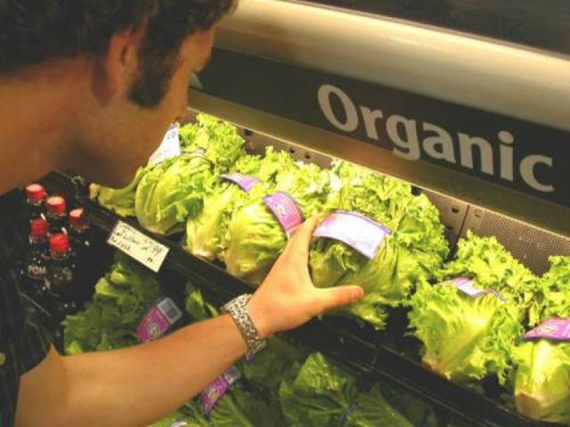 Projeto promete trazer primeiro mercado de produtos orgânicos do Estado a Volta Redonda