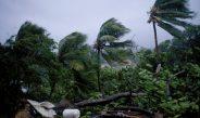 Primeiro-ministro de ilha caribenha relata devastação após passagem de furacão
